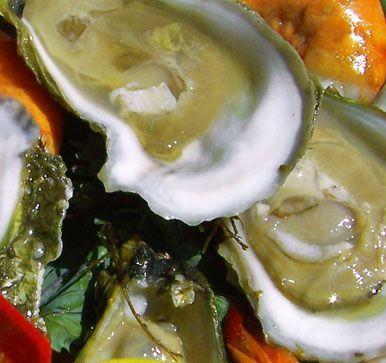ostras-alimento-afrodisiaco